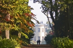 Website Gallery Image ~ A walk in Autumn ~ Thorpe Perrow