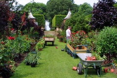 Website Gallery Image ~ The Plantsman ~ Hidcote