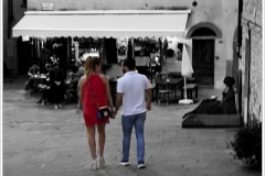 ITALY 2019 ~ Castellina-in-Chianti ~ B