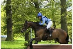 Chatsworth 2019 ~ 5098
