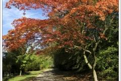 Derbyshire ~ October 2018 ~ 2852